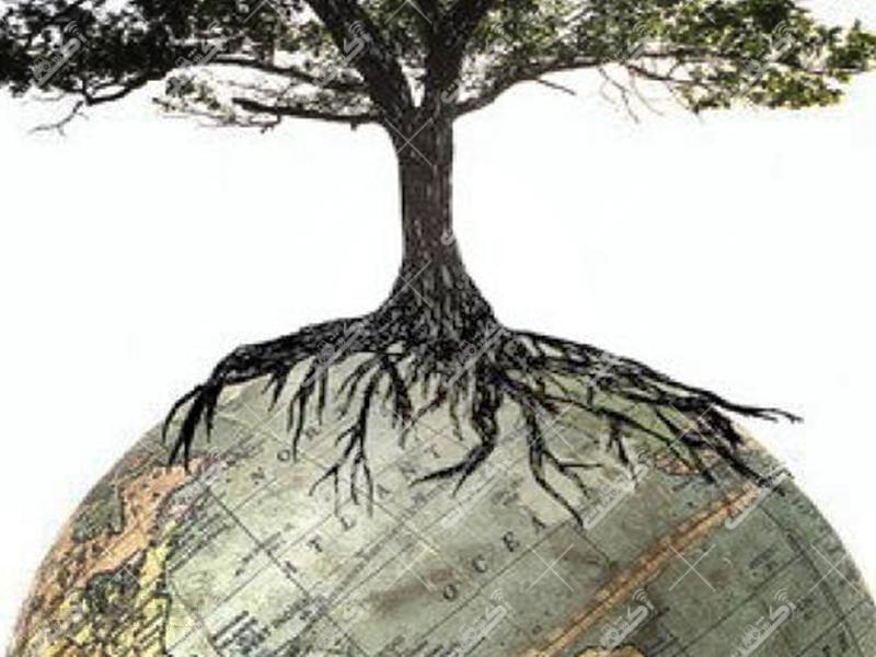 آبیاری نوین درخت و نهال با حدقل مصرف آب