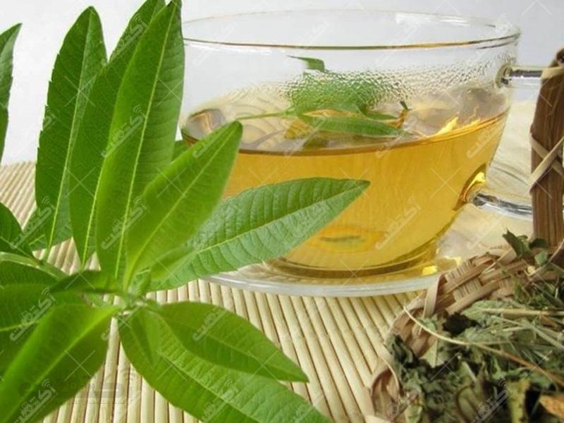 فروش بیش از 30 نوع نشاء و قلمه گیاهان دارویی در استان یزد