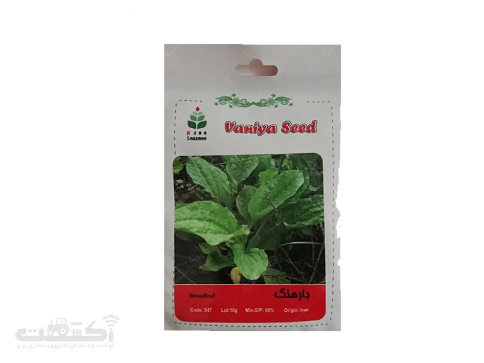 فروش بذر گیاه دارویی بارهنگ