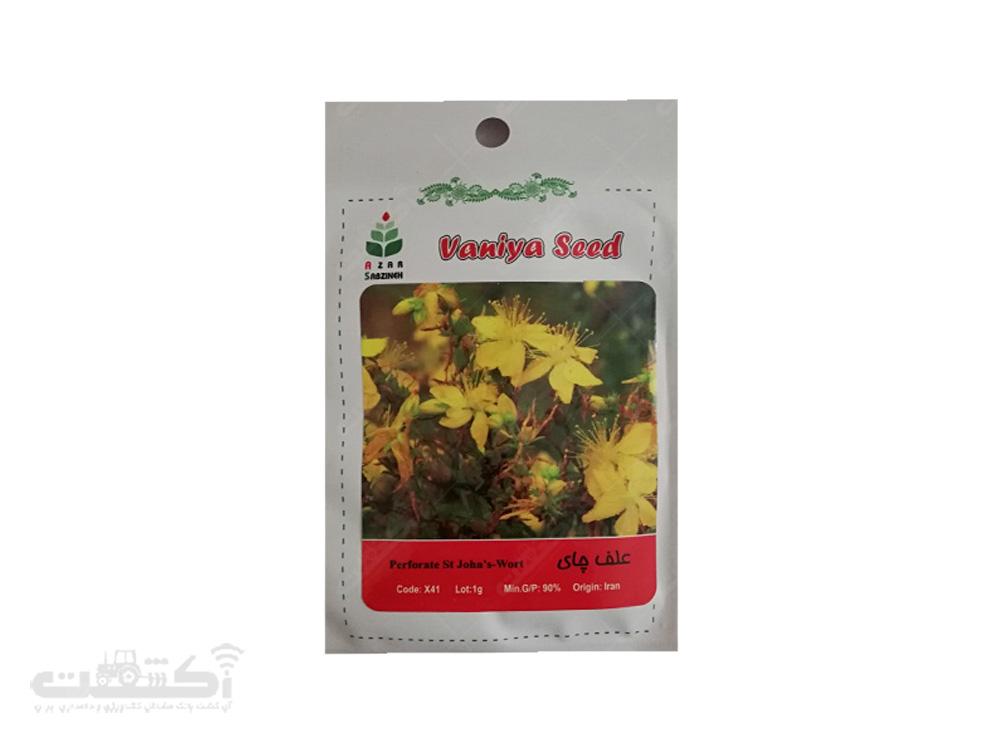 فروش بذر گیاه دارویی علف چای