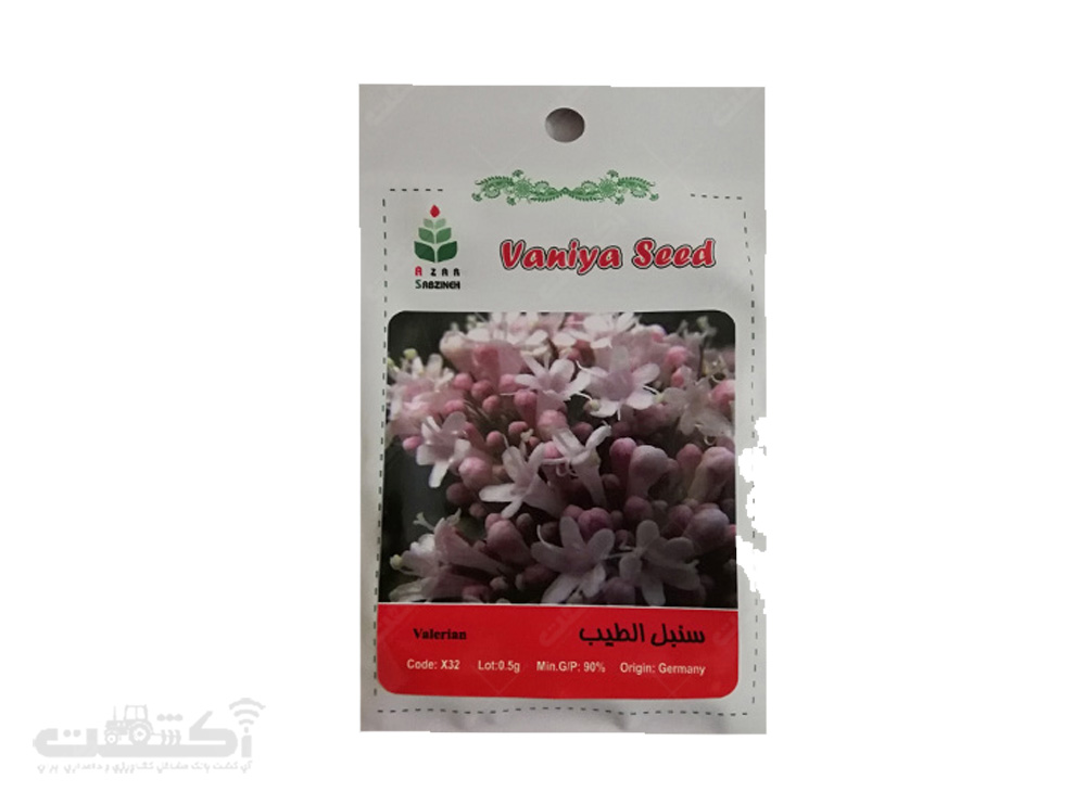فروش بذر گیاه دارویی سنبل الطیب