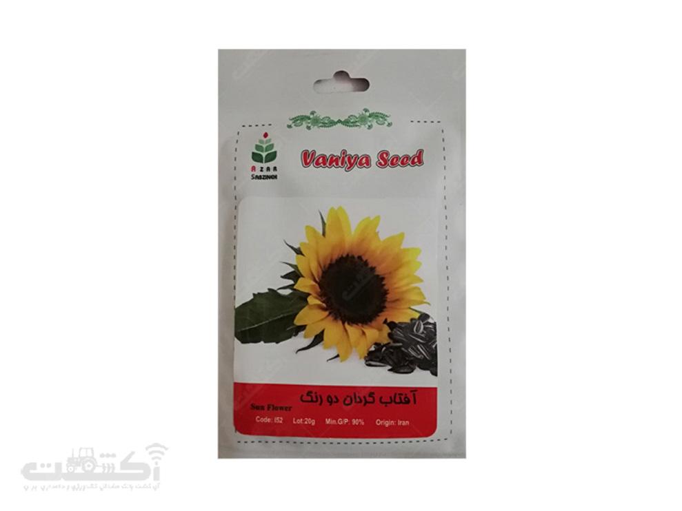 فروش بذر آفتابگردان خوراکی