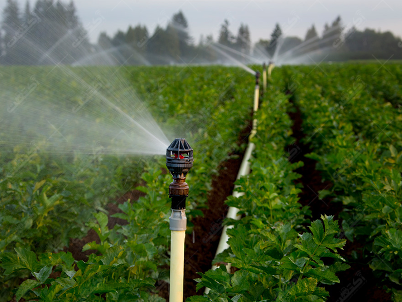 خدمات نصب و راه اندازی سیستم های آبیاری ریز نگار