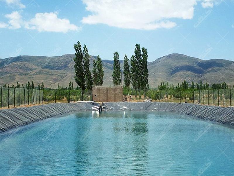 شرکت صنایع ورق ایران