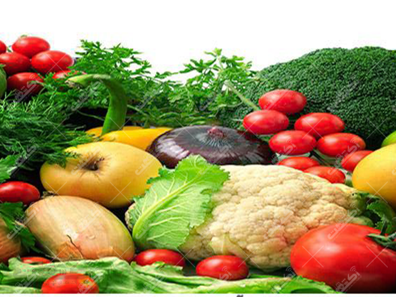 شرکت تولیدی و خدماتی کشاورزی واتاش بالاجاده