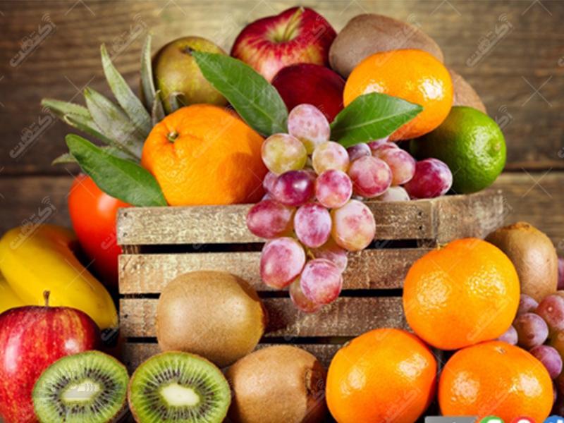 شرکت میوه نورانی