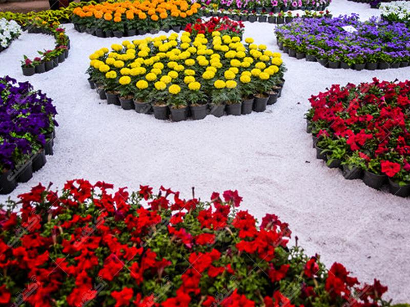 مجموعه گل و گیاه کوثر