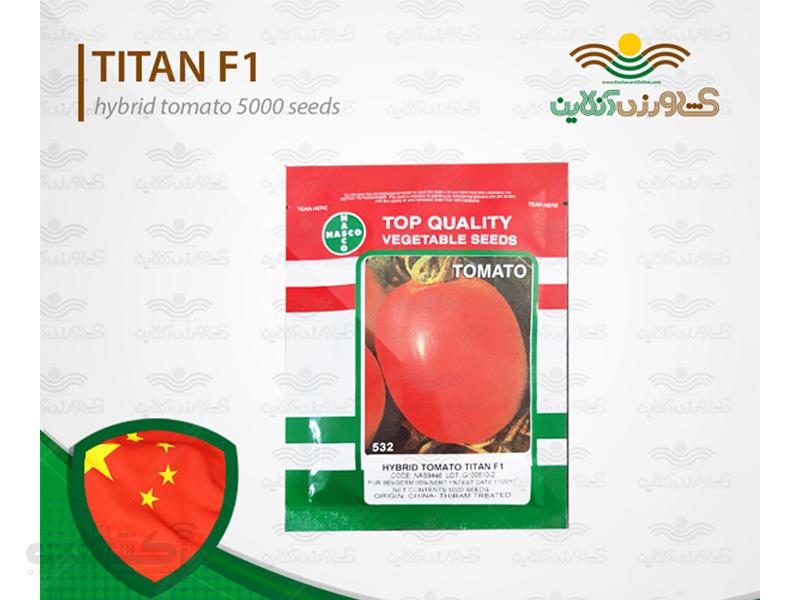 بذر گوجه فرنگی تیتان هیبرید پربار