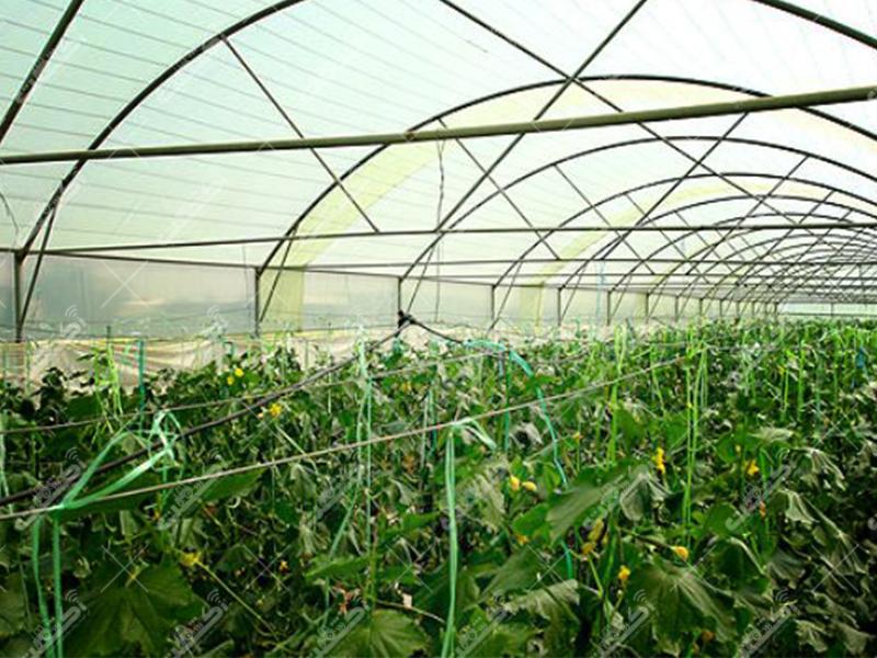 شرکت سبزینه گستران شهریار