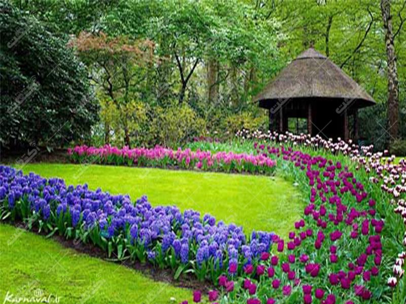 شرکت نوین گل و گیاه دشت بهشت