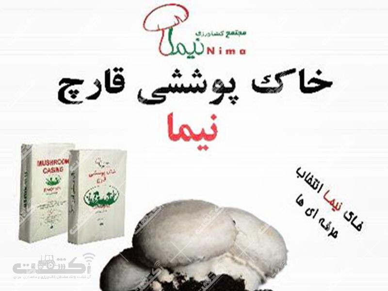 شرکت قارچ نیما