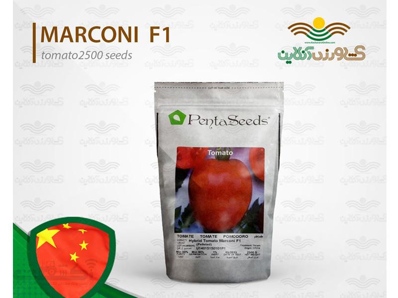 بذر گوجه فرنگی مارکنی
