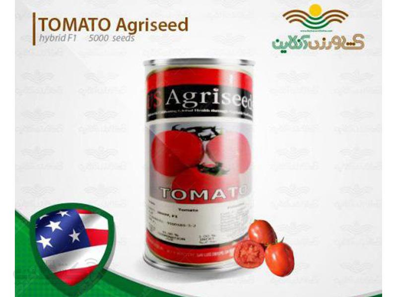 بذر گوجه اینوی آمریکا هیبرید اف یک