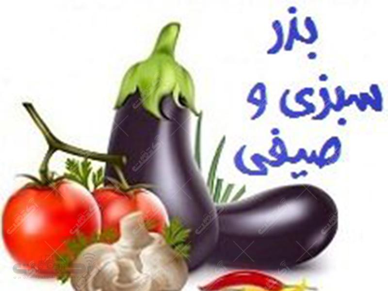 شرکت سهامی فلات ایران
