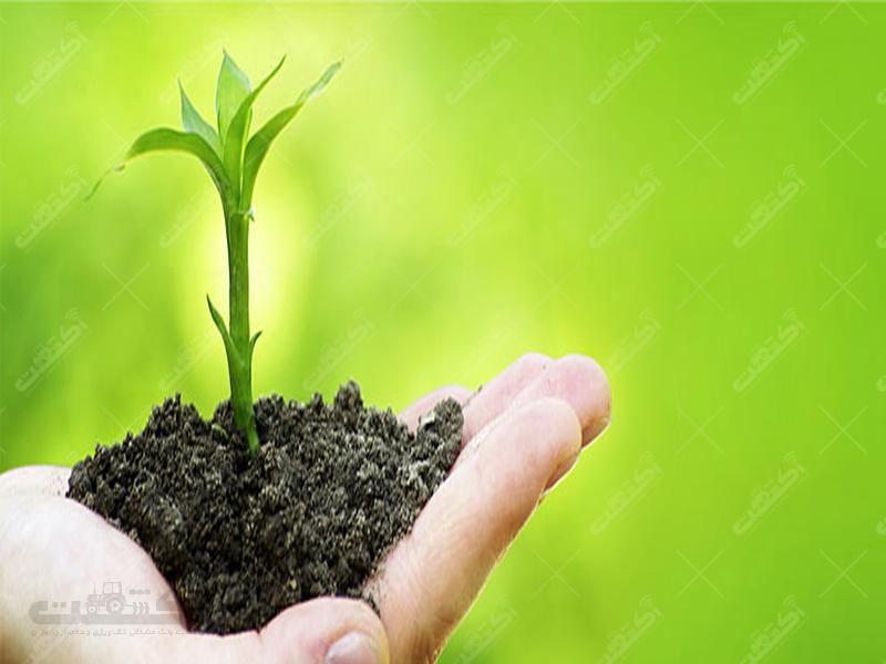 شرکت دالین سبز فارس