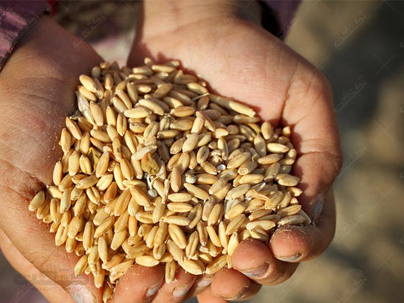 اتحادیه شرکت های تعاونی تولید روستایی زرخیز دشت گلستان