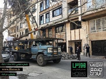خدمات باغبانی، تخصص ماست
