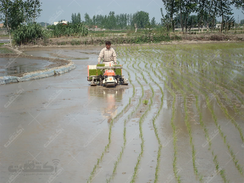 شرکت مزرعه سبز مدرن میاندرود