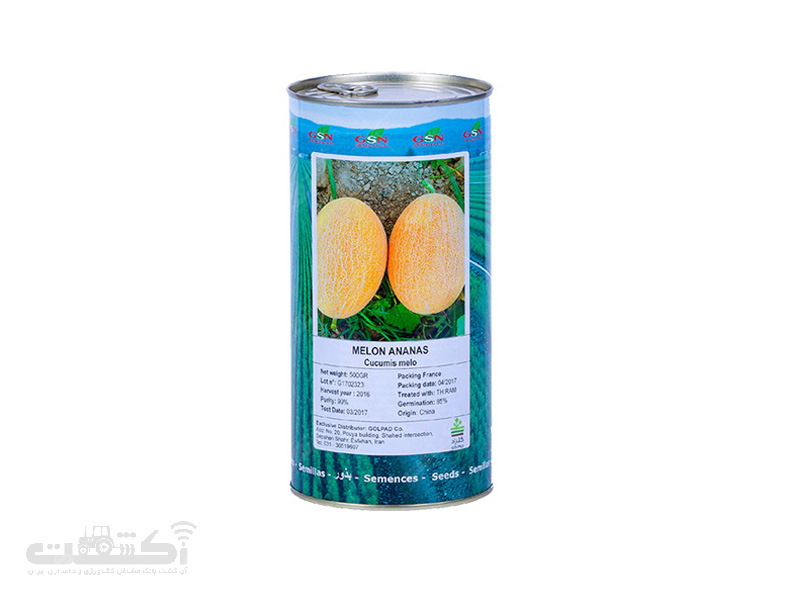 بذر ملون آناناسی