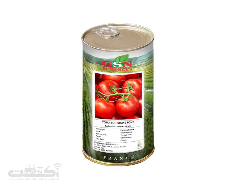 بذر گوجه راک استون
