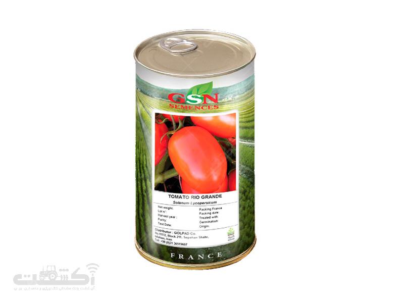 بذر گوجه ریوگراند