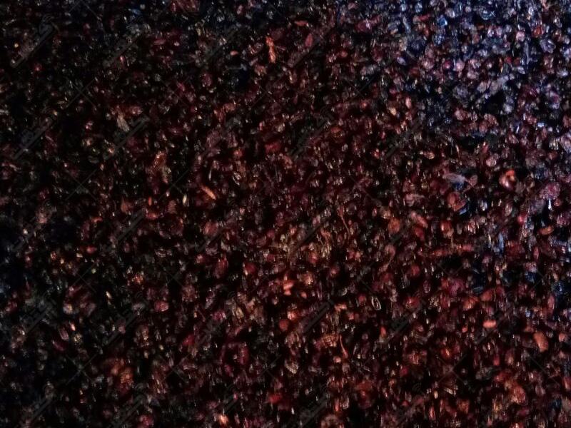 زرشک سیاه کوهی دانه دار