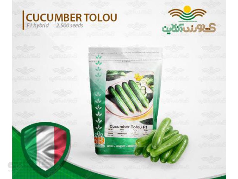 بذر خیار هیبرید طلوع ایتالیا