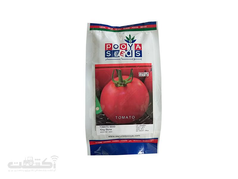 بذر گوجه فرنگی کینگ استون