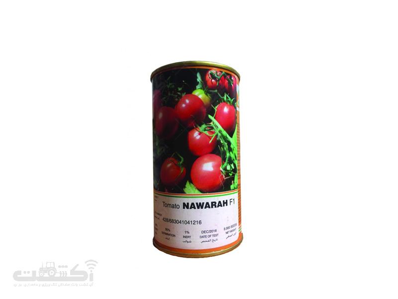بذر گوجه فرنگی هیبرید ناوارا