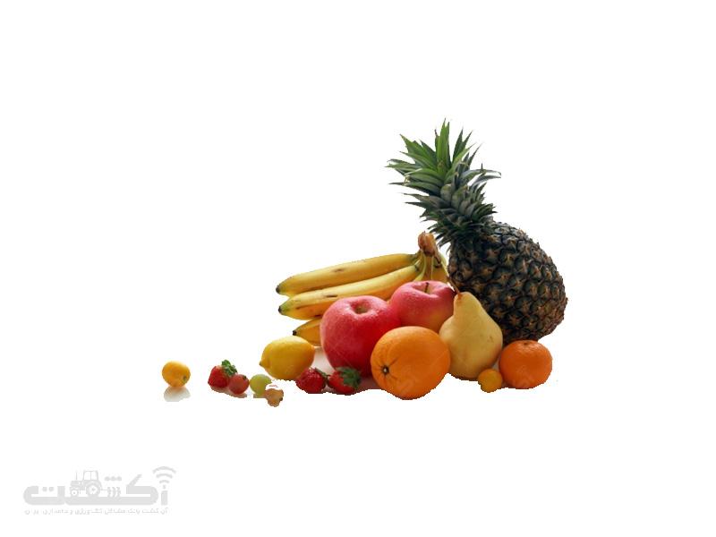 واردات میوه های استوایی