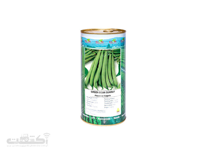 بذر لوبیا سبز سانری