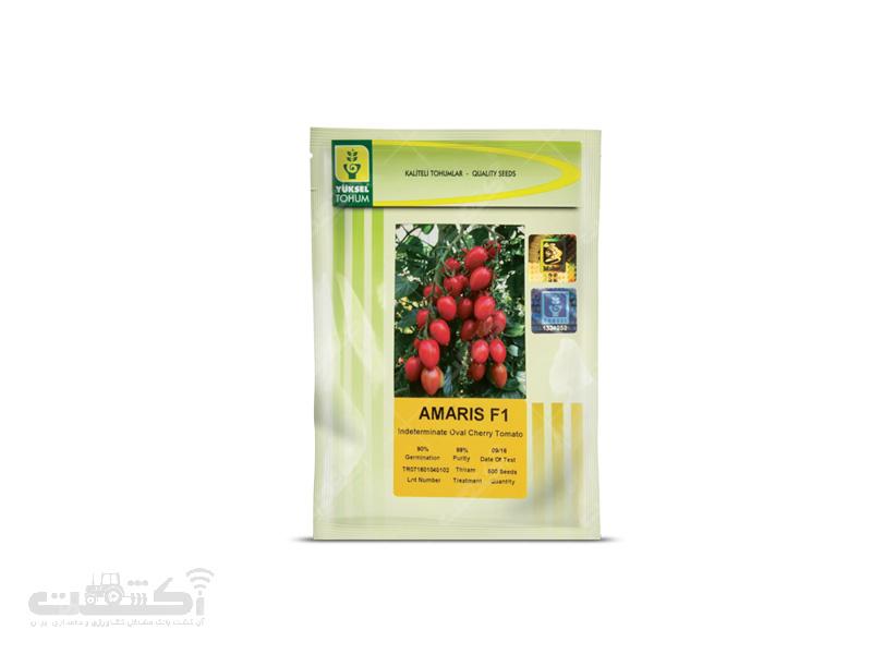 بذر گوجه فرنگی گلخانه ای آماریس