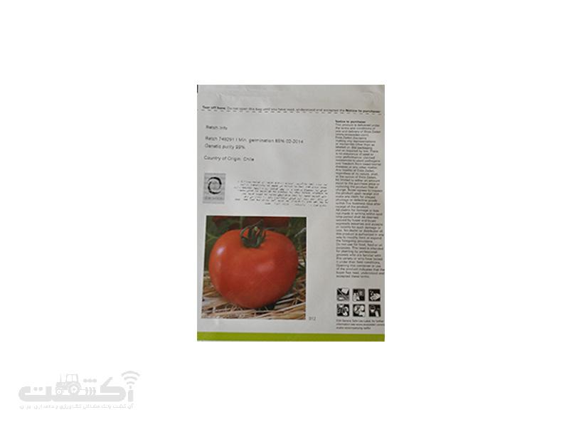 بذر گوجه فرنگی گلخانه ای سیلویانا