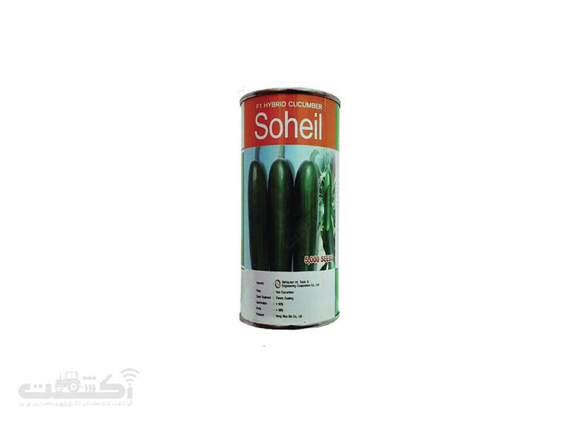 بذر خیار سهیل
