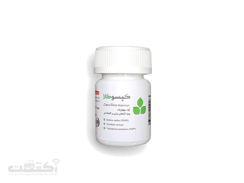 کود بیولوژیک کپسوکارا