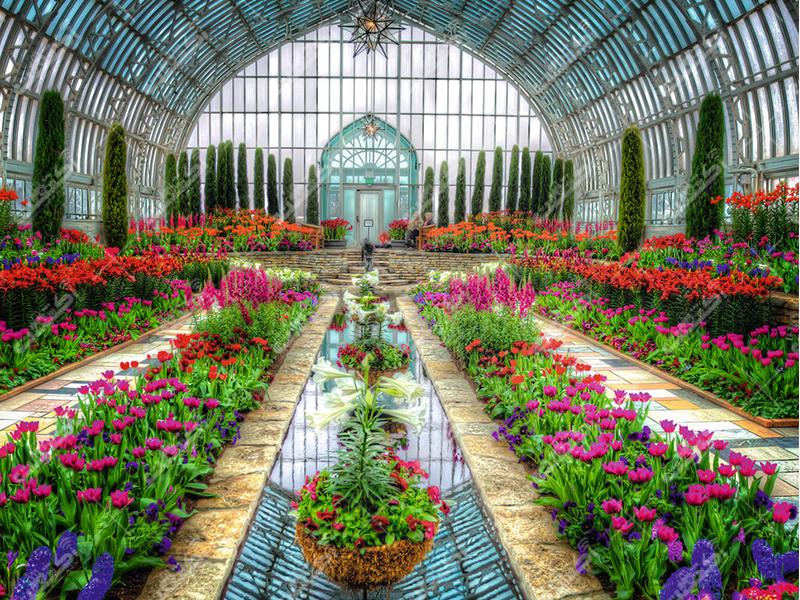 فروشگاه کشاورزی گل آذین،یزد