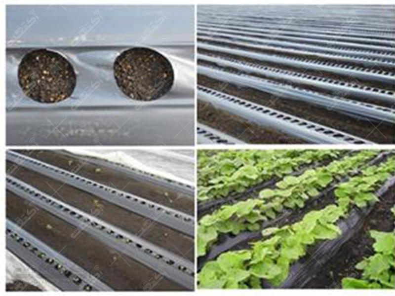 انواع نايلون گلخانه ای و کشاورزی،  مالچ مشكي و دو رنگ در عرض و ضخامت های  مختلف