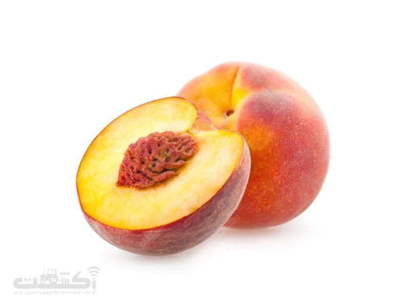 میوه های هسته دار