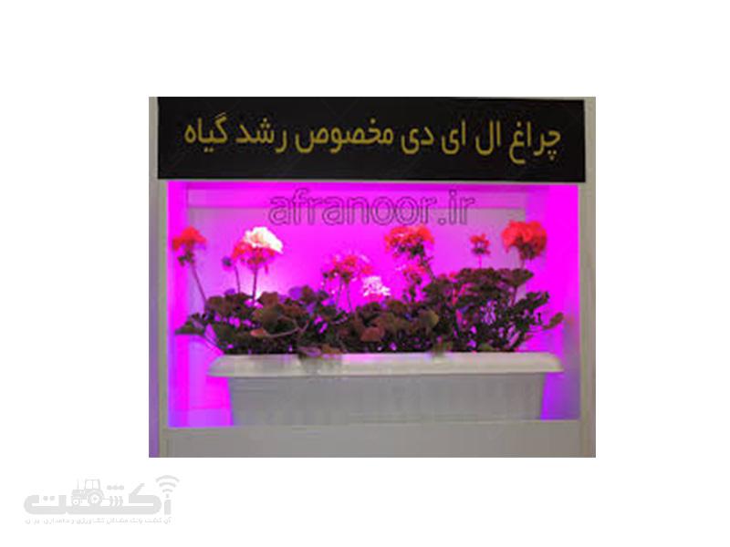 چراغ رشد گیاه ال ای دی 6 وات
