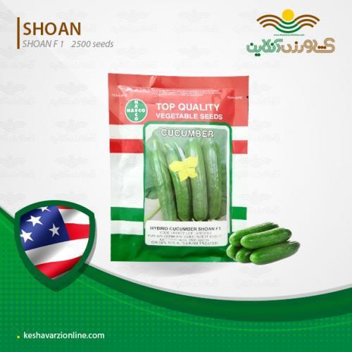 فروش بذر خیار شوان آمریکا