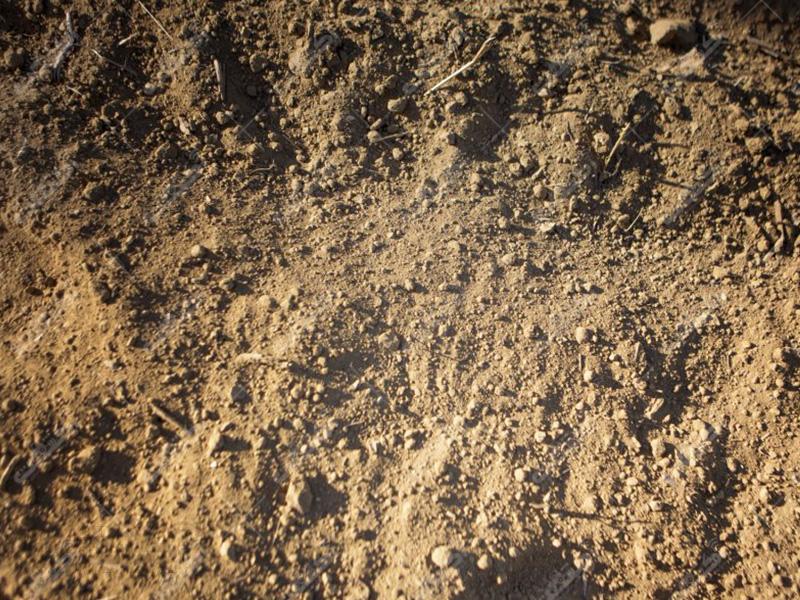 خاک نشاء