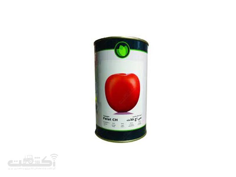 نشاء گوجه فرنگی رقم سی اچ فلات