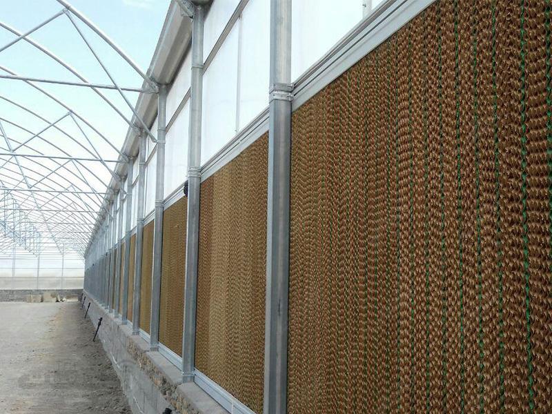 تولید پد سلولزی گلخانه ها