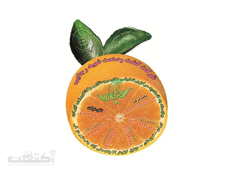 شرکت کشت و صنعت شهید رجایی تولیدکننده محصولات کشاورزی