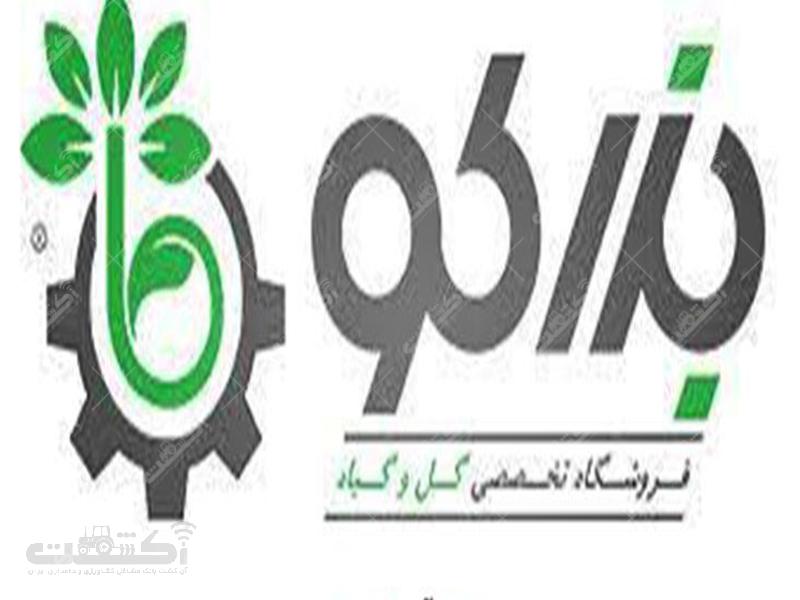 شرکت بذر کو واردکننده بذر گل