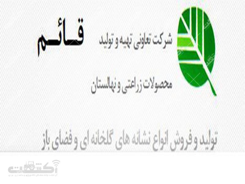 شرکت تعاونی نهالستان قائم تولید فروش انواع نشاءهای گلخانه ای فضای باز