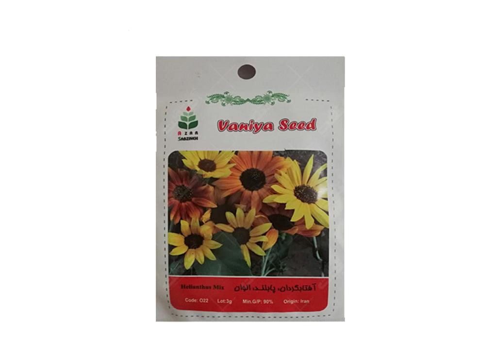 فروش بذر گل آفتابگردان زینتی