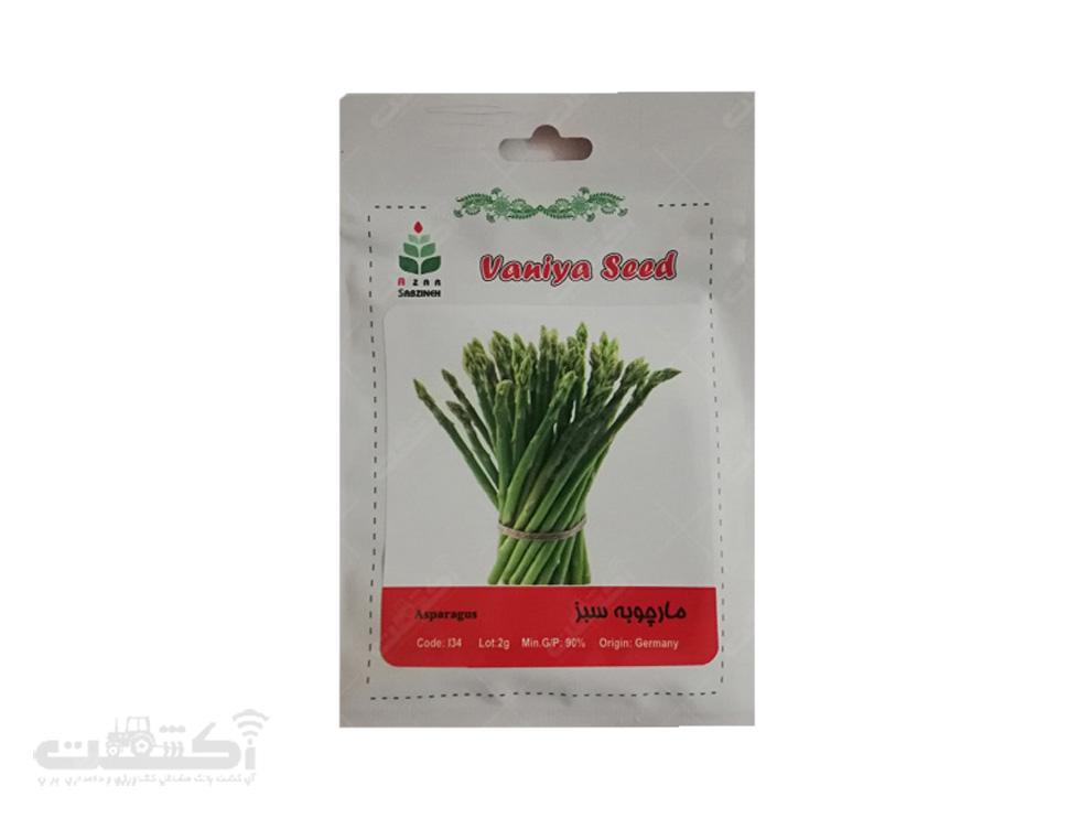 فروش بذر مارچوبه سبز