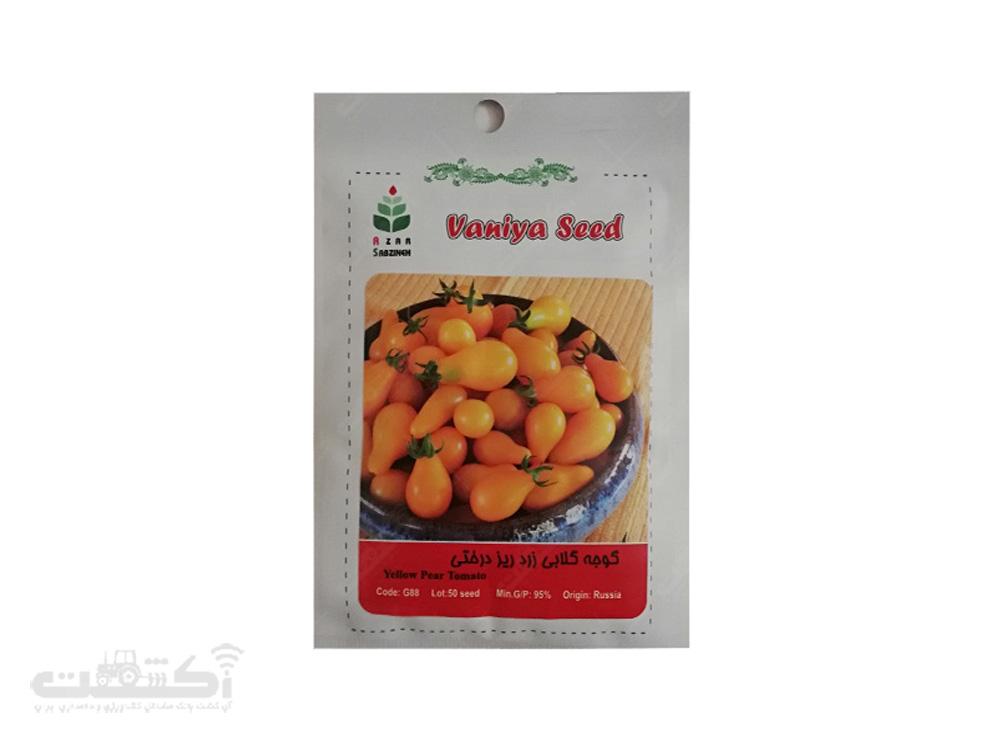 فروش بذر گوجه گلابی