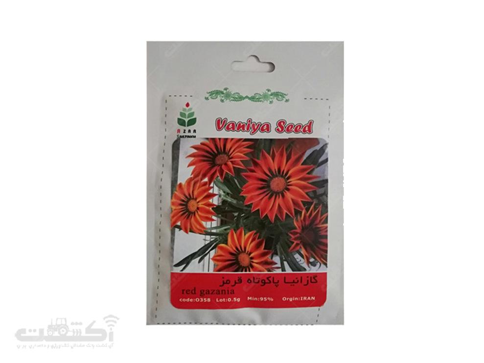 فروش بذر گل گازانیا پاکوتاه قرمز